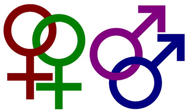 test-seksualnuyu-orientatsiyu-devushek